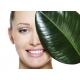 Detoksikuojanti veido kaukė BIOMED Pure Detox Mask