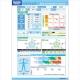Programinė įranga TANITA GMON Consumer - 2