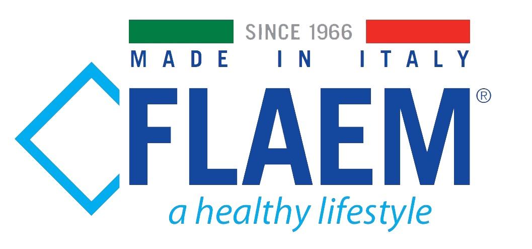 Flaem-logo-1.jpg